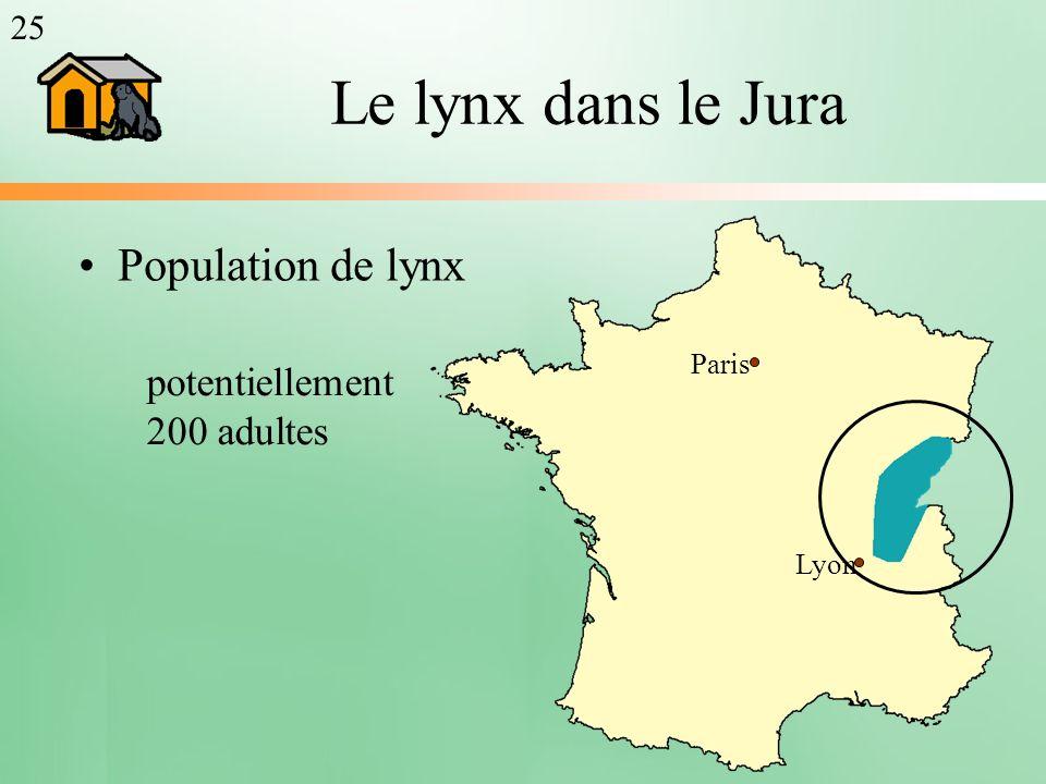 Le lynx dans le Jura Population de lynx potentiellement 200 adultes 25