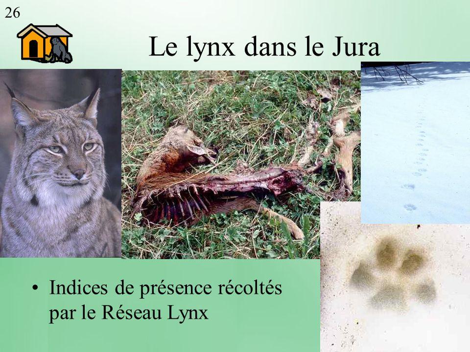 Le lynx dans le Jura Population de lynx
