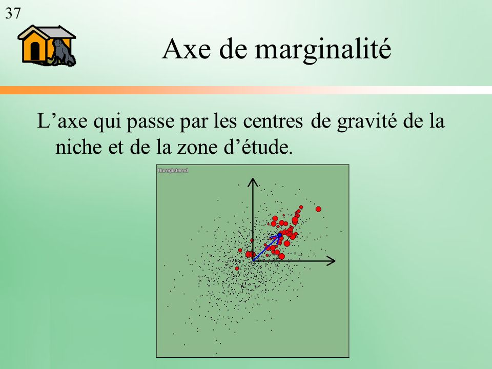 37 Axe de marginalité L'axe qui passe par les centres de gravité de la niche et de la zone d'étude.