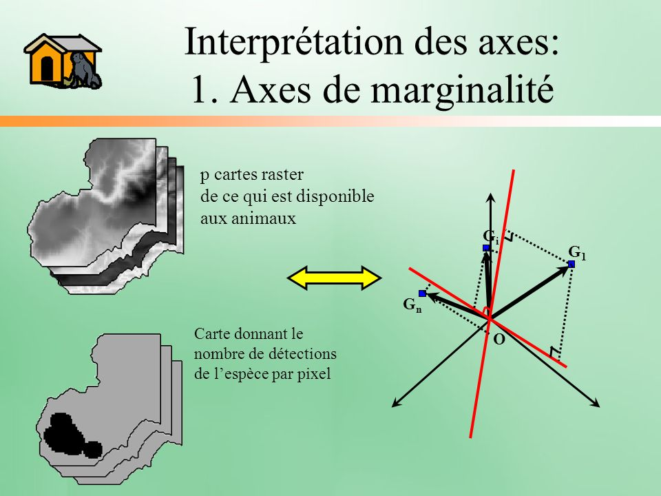 Interprétation des axes: 1. Axes de marginalité