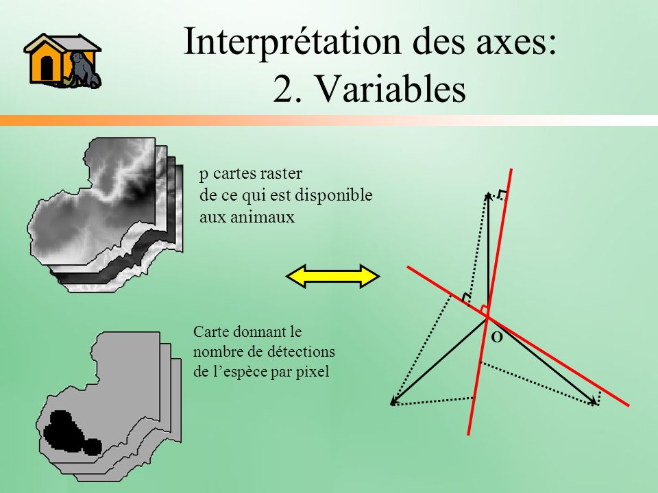 Interprétation des axes: 2. Variables