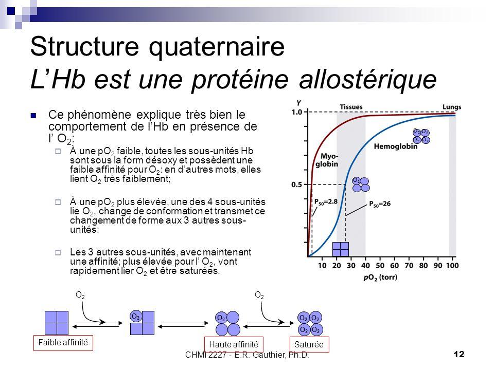 Structure quaternaire L'Hb est une protéine allostérique