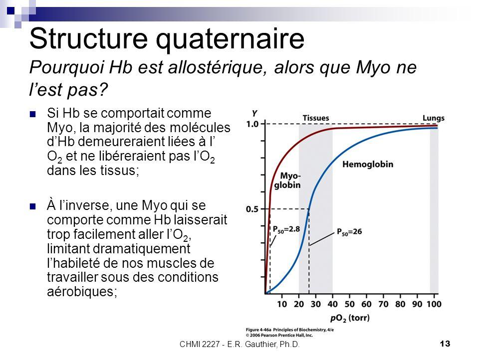Structure quaternaire Pourquoi Hb est allostérique, alors que Myo ne l'est pas
