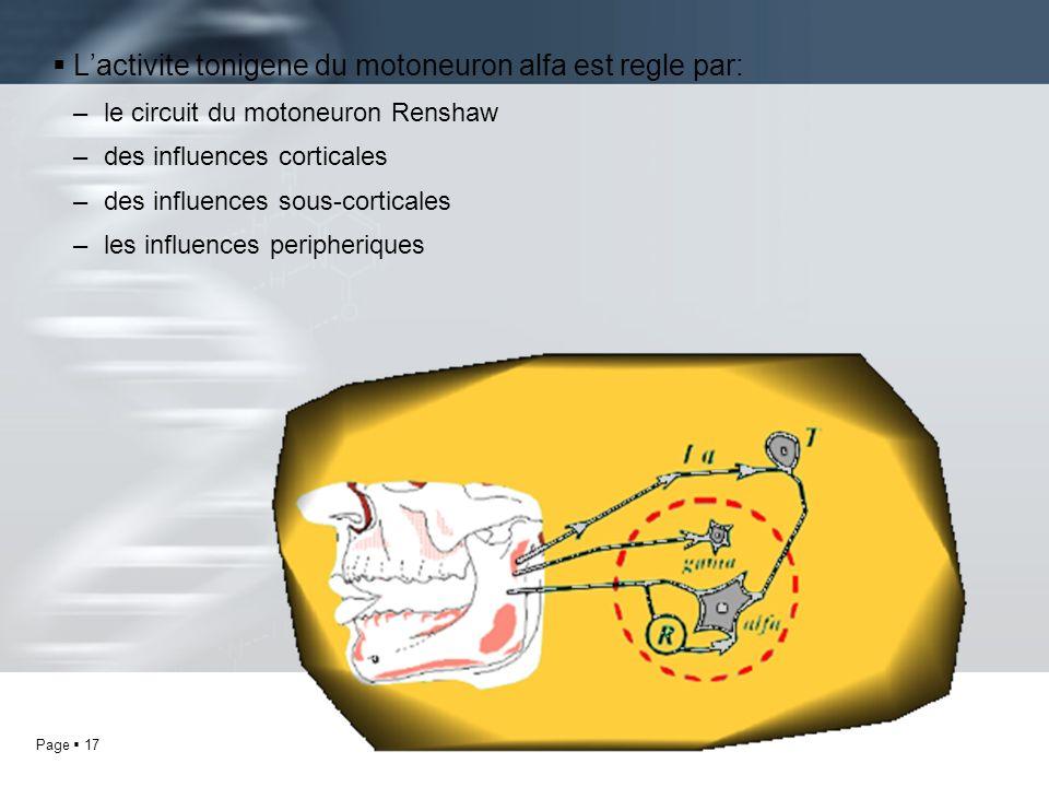 L'activite tonigene du motoneuron alfa est regle par:
