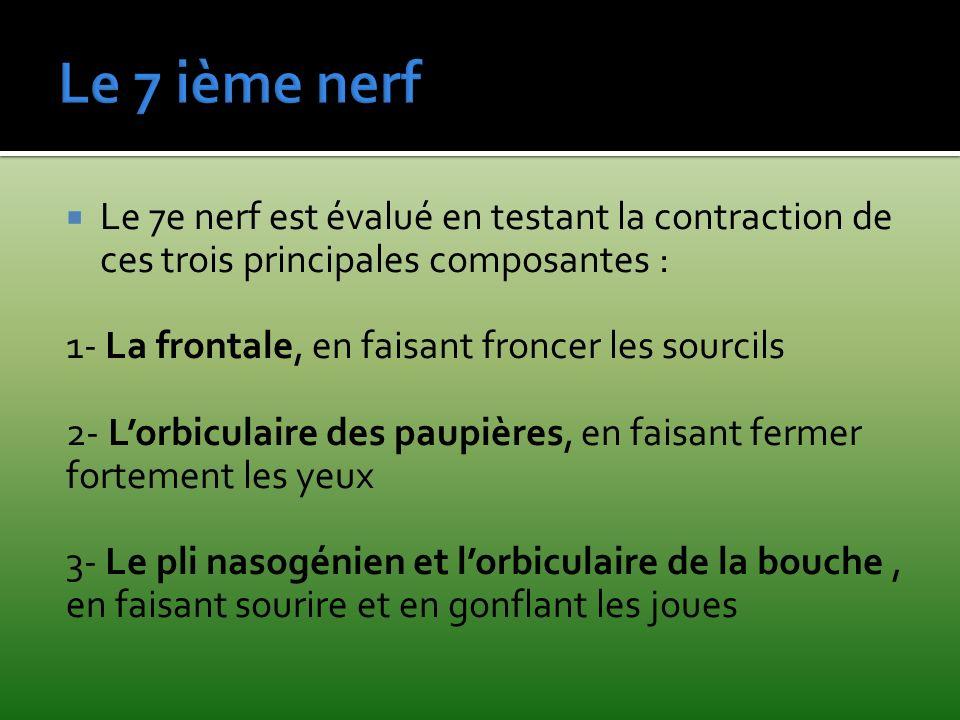 Le 7 ième nerf Le 7e nerf est évalué en testant la contraction de ces trois principales composantes :