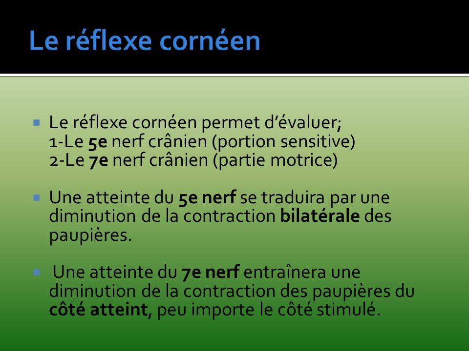 Le réflexe cornéen Le réflexe cornéen permet d'évaluer;