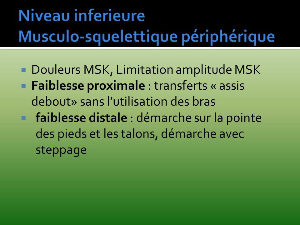 Niveau inferieure Musculo-squelettique périphérique