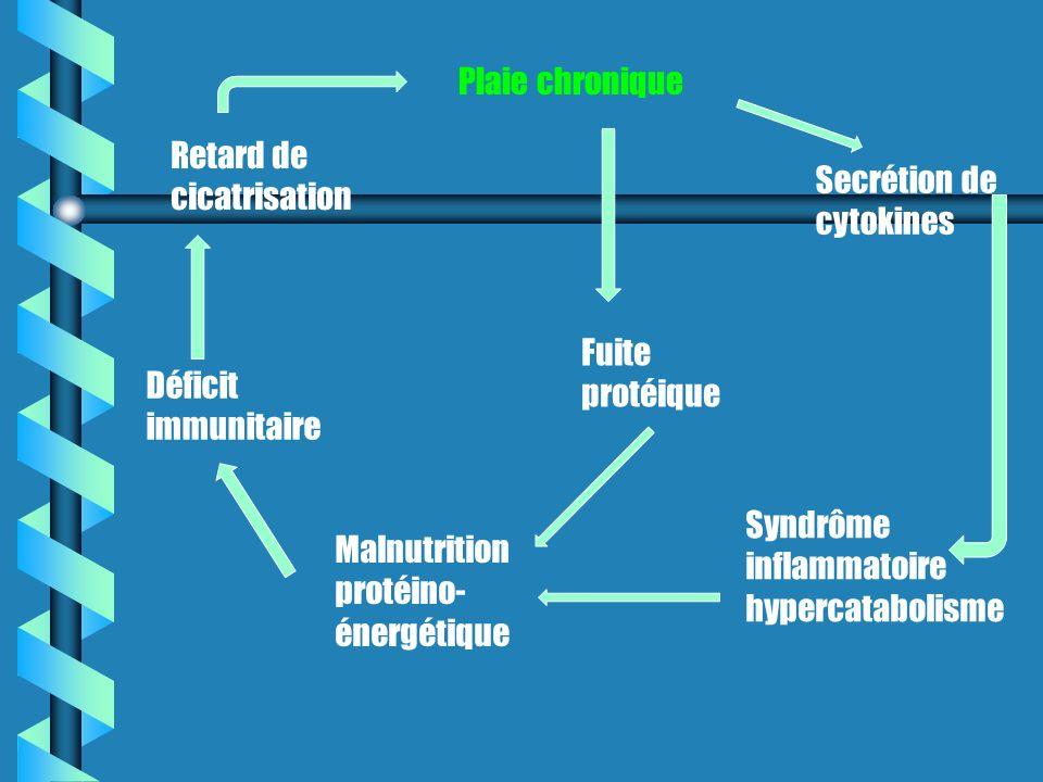 Plaie chronique Retard de cicatrisation. Secrétion de cytokines. Fuite protéique. Déficit immunitaire.