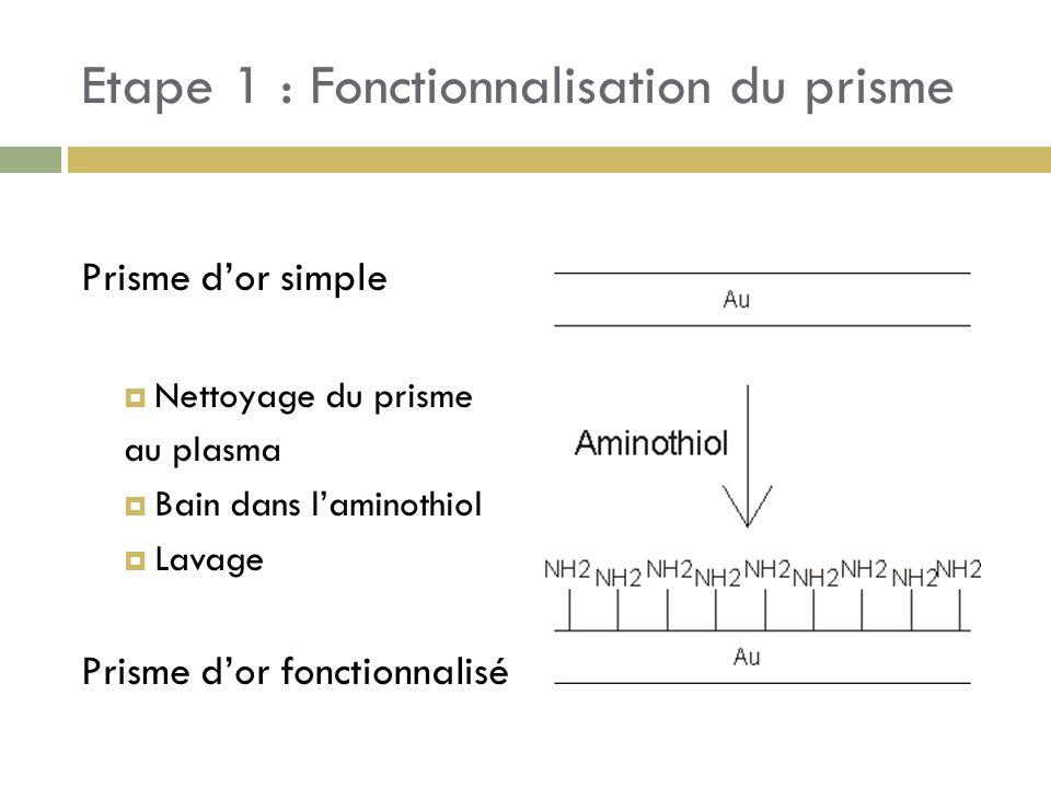 Etape 1 : Fonctionnalisation du prisme