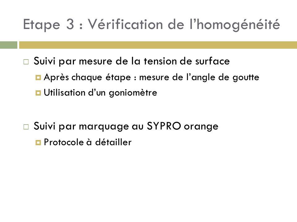 Etape 3 : Vérification de l'homogénéité