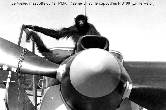La Vieille, mascotte du 1er PMAH 12ème DI sur le capot d'un N 3400 (Emile Reich)