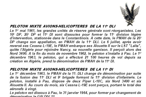 PELOTON MIXTE AVIONS-HELICOPTERES DE LA 11e DLI