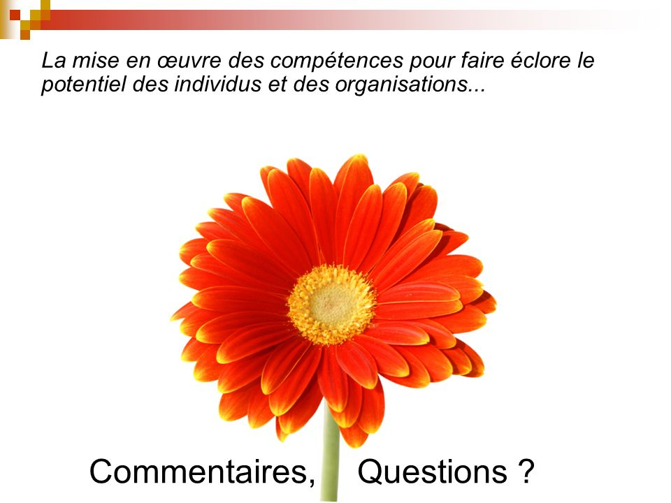 Commentaires, Questions