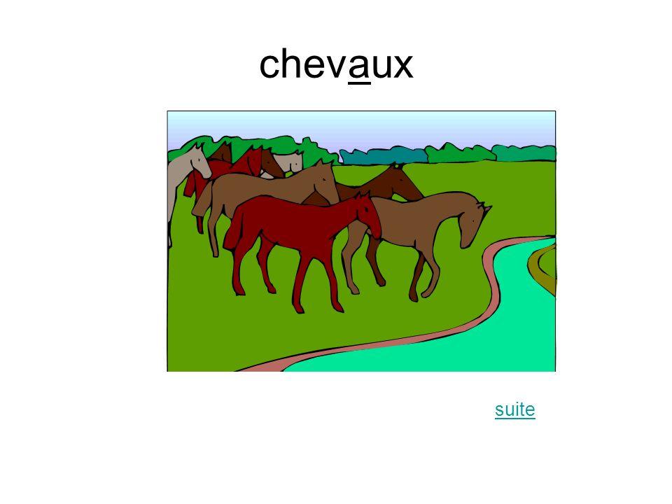 chevaux suite