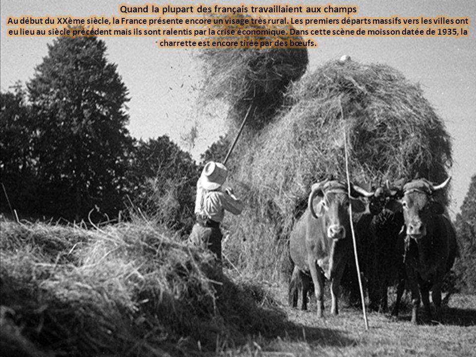 Quand la plupart des français travaillaient aux champs