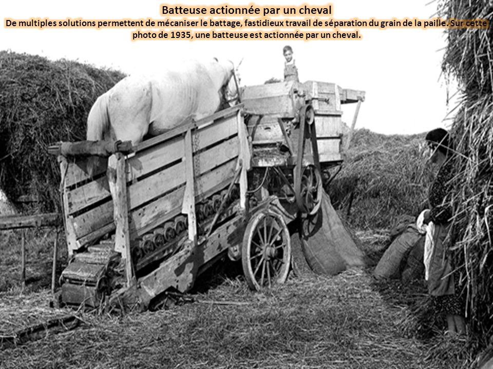 Batteuse actionnée par un cheval