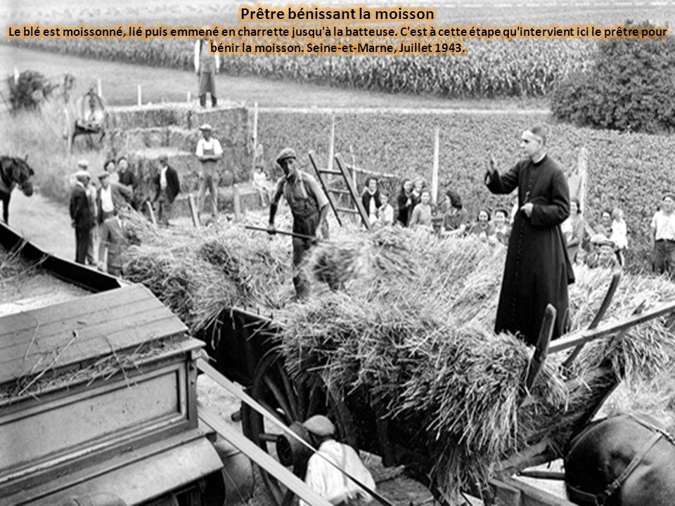 Prêtre bénissant la moisson