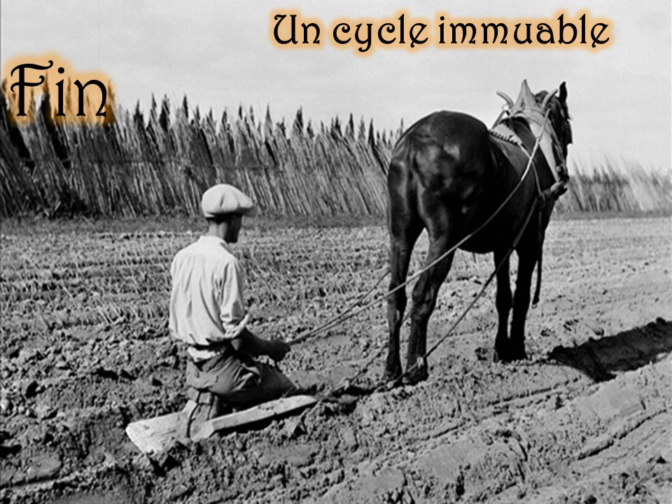 Un cycle immuable Fin
