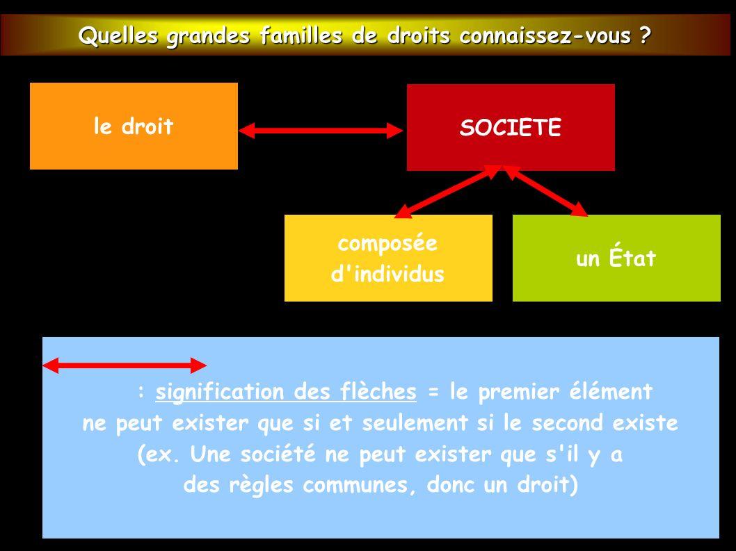 EXERCICE FICHE Quelles grandes familles de droits connaissez-vous