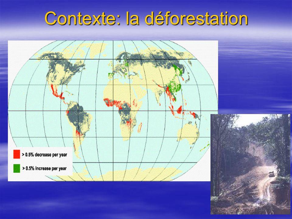 Contexte: la déforestation