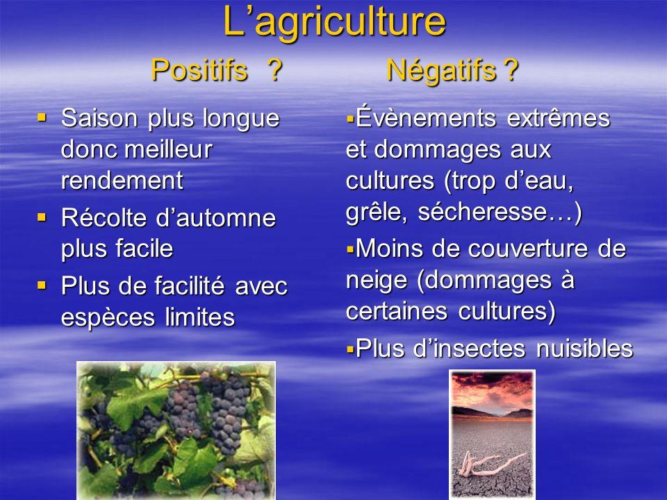 L'agriculture Positifs Négatifs