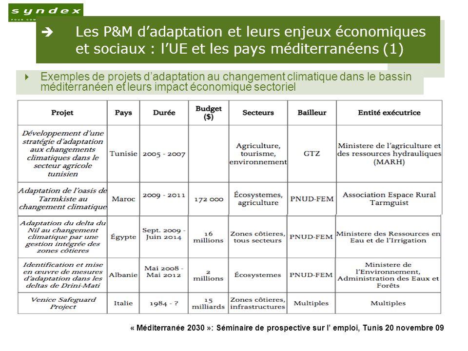 Les P&M d'adaptation et leurs enjeux économiques et sociaux : l'UE et les pays méditerranéens (1)