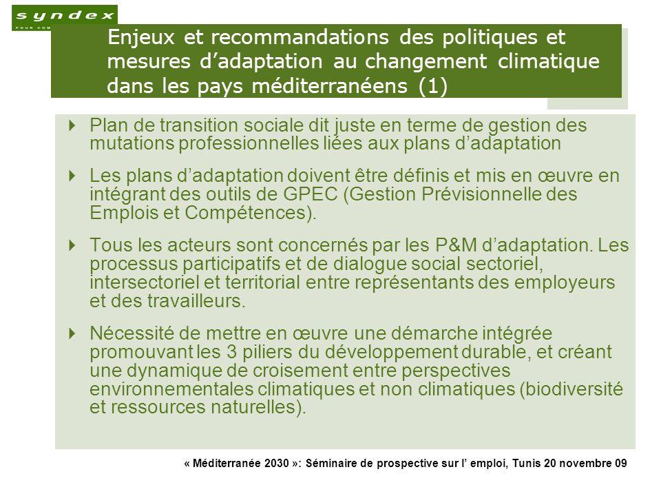 Enjeux et recommandations des politiques et mesures d'adaptation au changement climatique dans les pays méditerranéens (1)