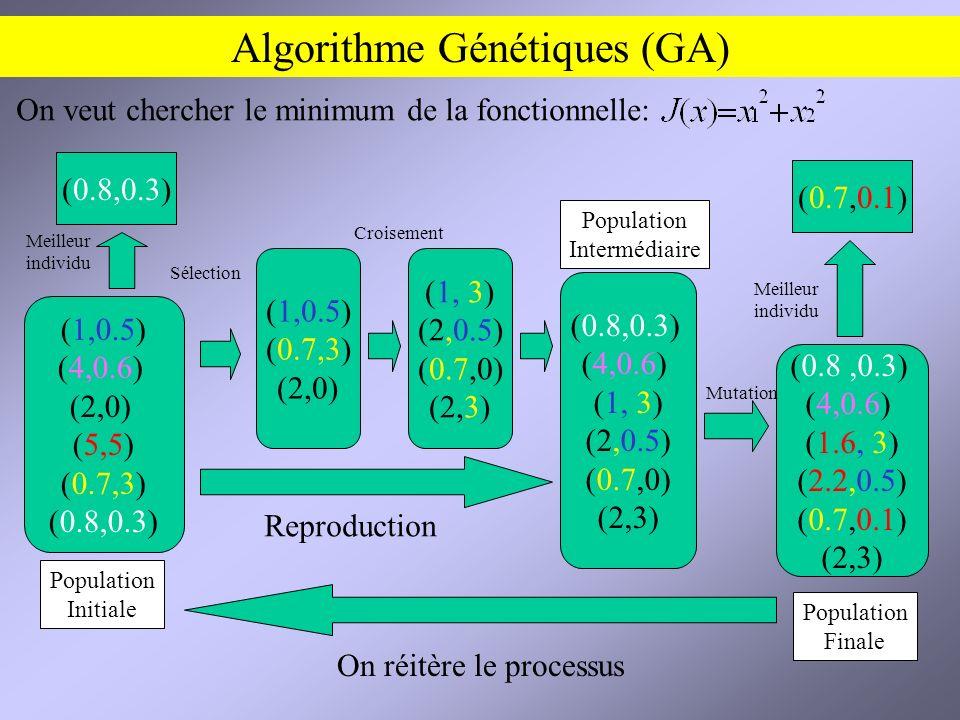 Algorithme Génétiques (GA)