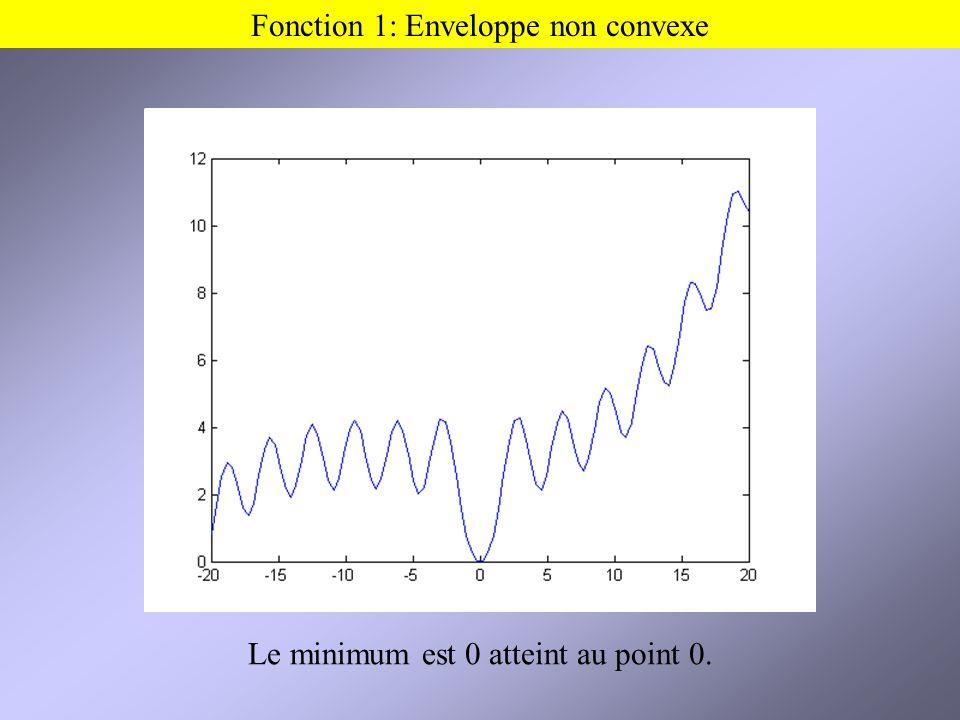 Fonction 1: Enveloppe non convexe