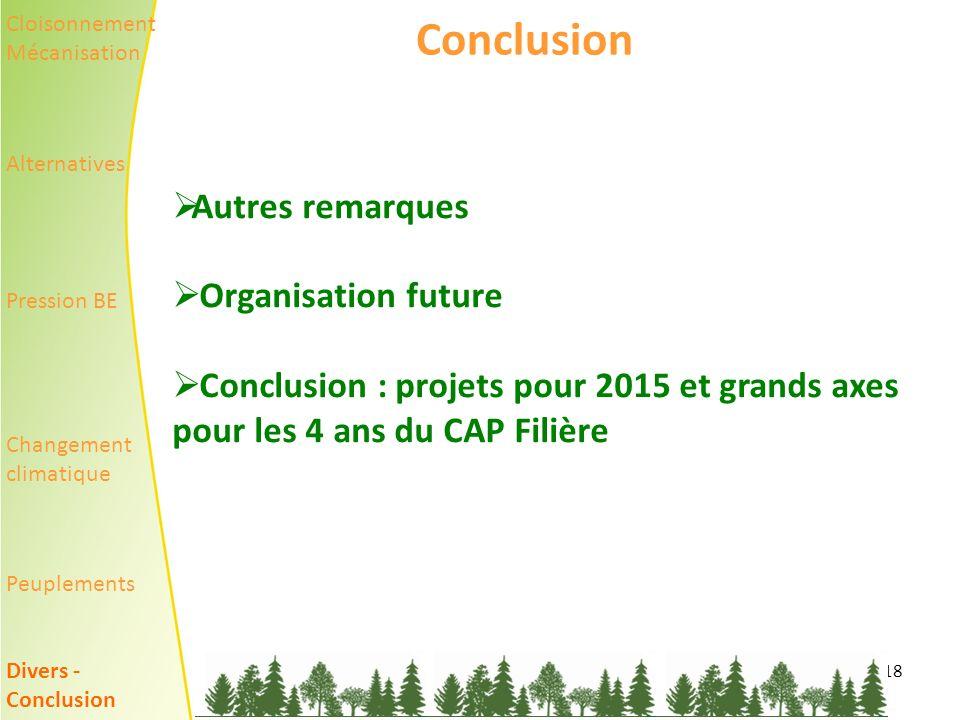 Conclusion Autres remarques Organisation future