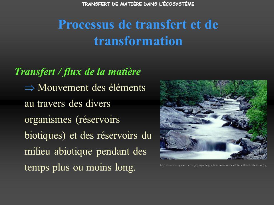 Processus de transfert et de transformation