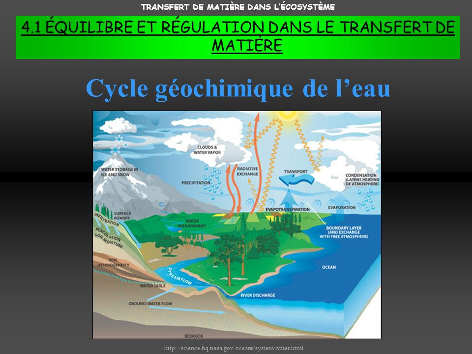 TRANSFERT DE MATIÈRE DANS L'ÉCOSYSTÈME Cycle géochimique de l'eau