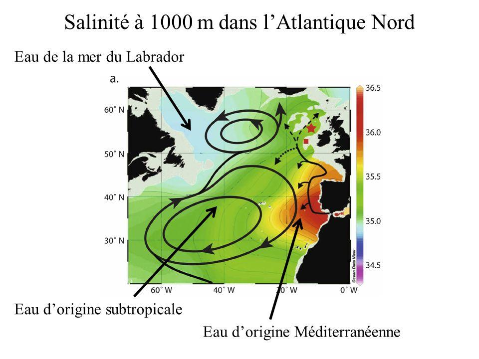 Salinité à 1000 m dans l'Atlantique Nord