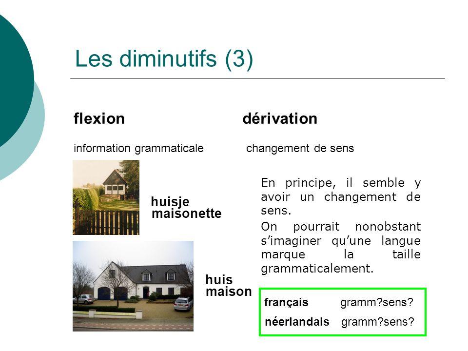 Les diminutifs (3) flexion dérivation huisje maisonette huis maison