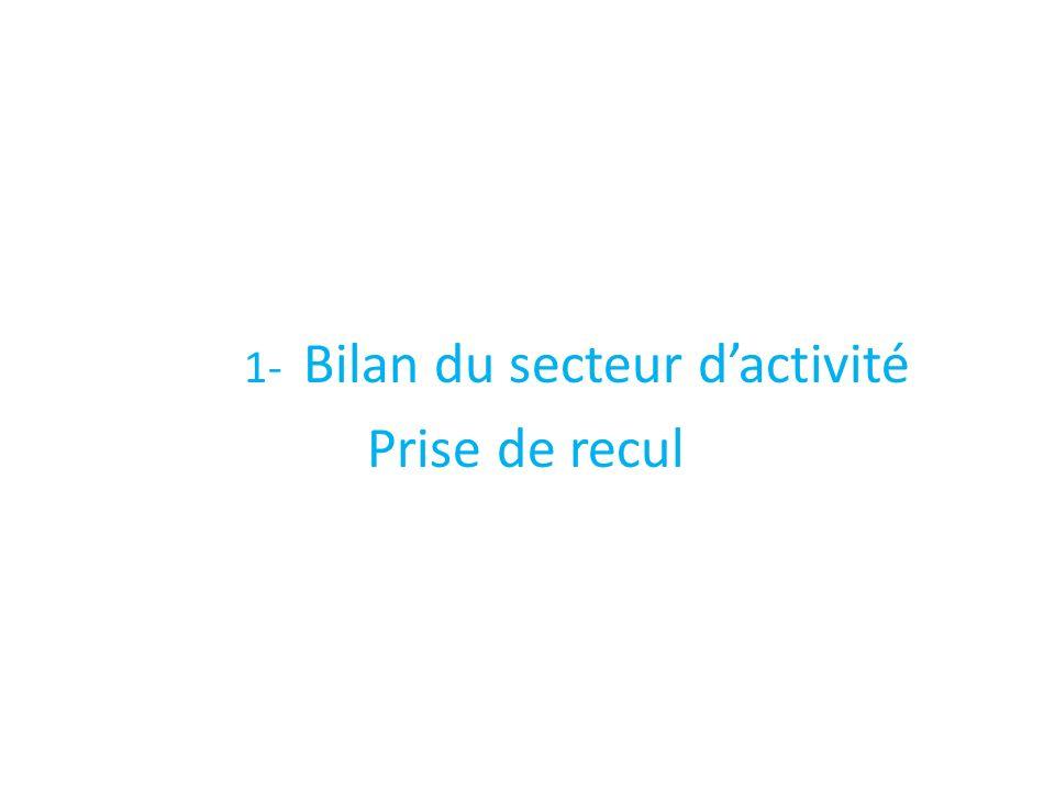 1- Bilan du secteur d'activité