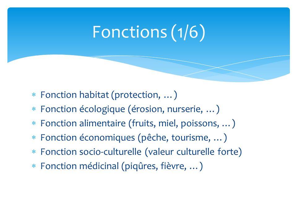 Fonctions (1/6) Fonction habitat (protection, …)