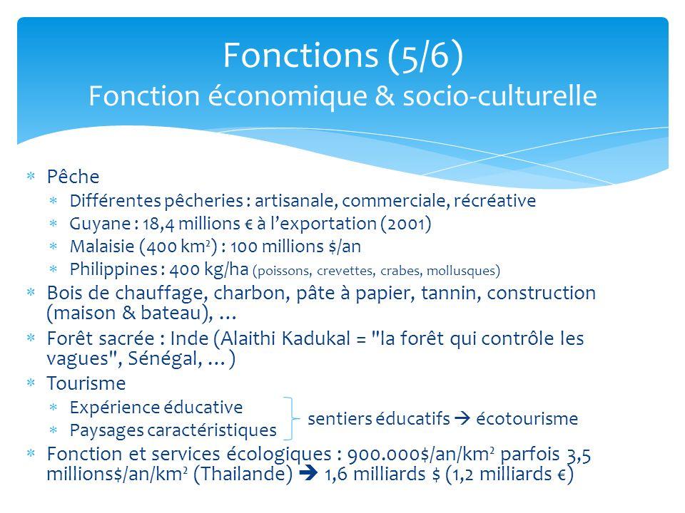 Fonctions (5/6) Fonction économique & socio-culturelle