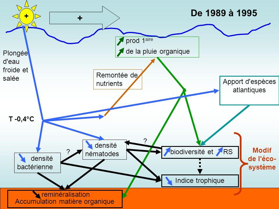 De 1989 à 1995 + + prod 1aire de la pluie organique