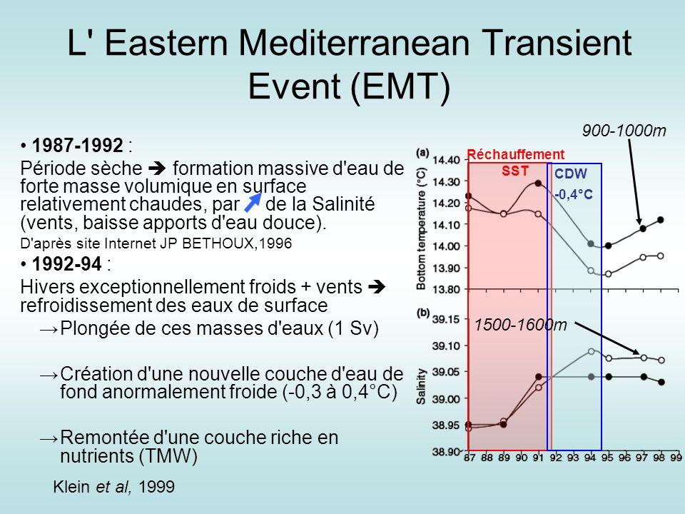 L Eastern Mediterranean Transient Event (EMT)