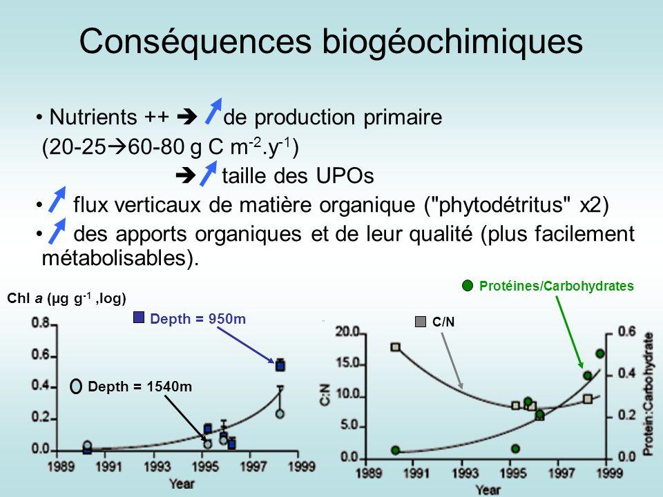 Conséquences biogéochimiques