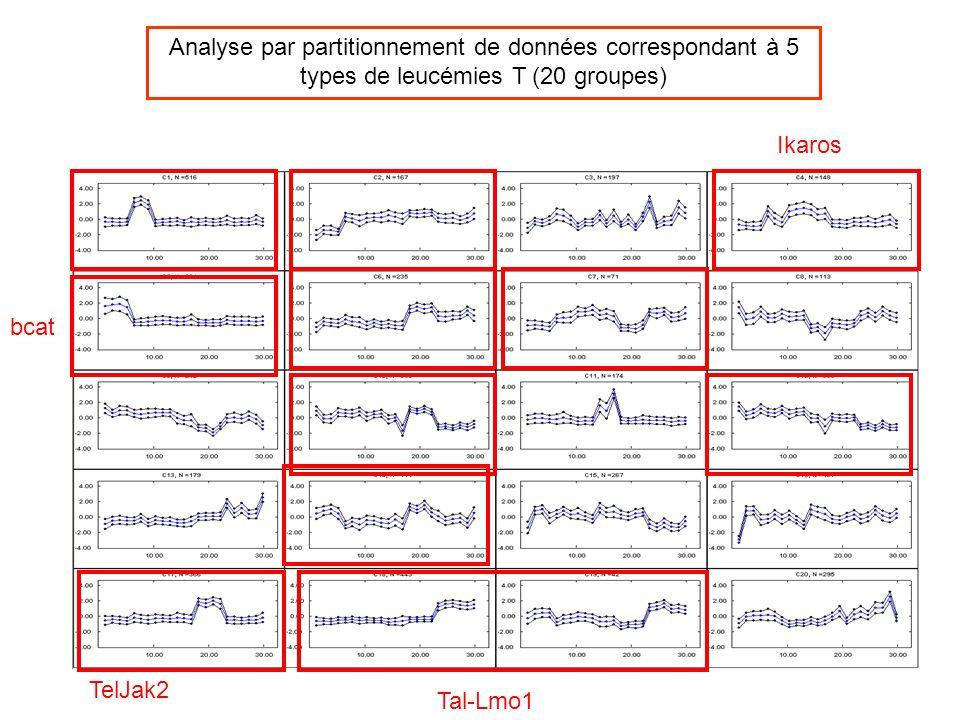Analyse par partitionnement de données correspondant à 5 types de leucémies T (20 groupes)