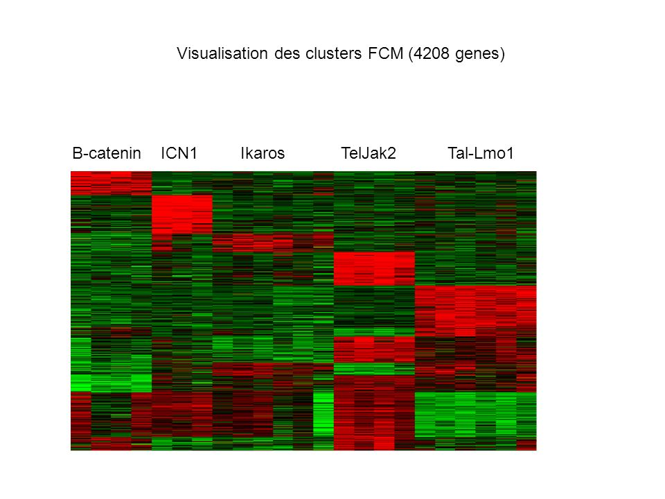 Visualisation des clusters FCM (4208 genes)
