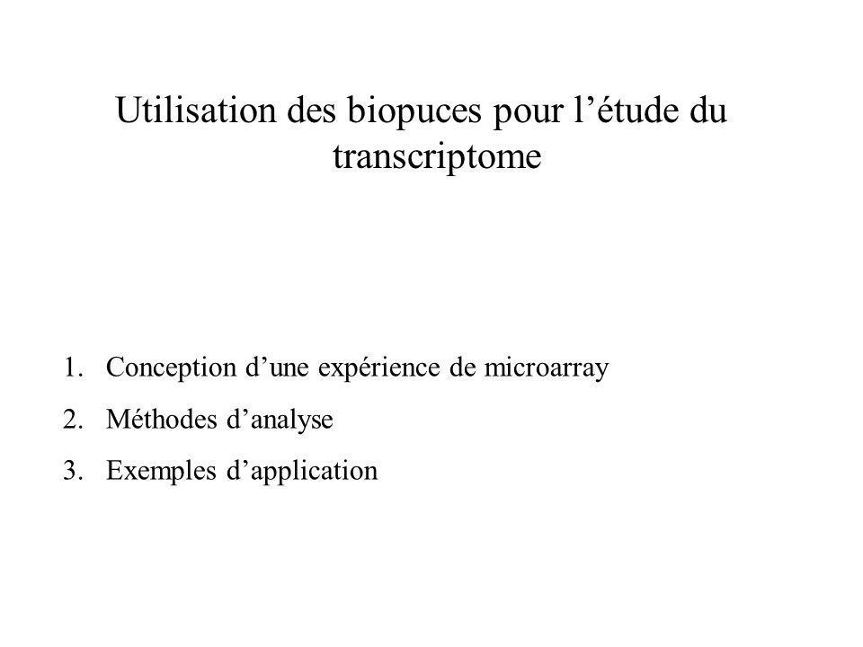 Utilisation des biopuces pour l'étude du transcriptome