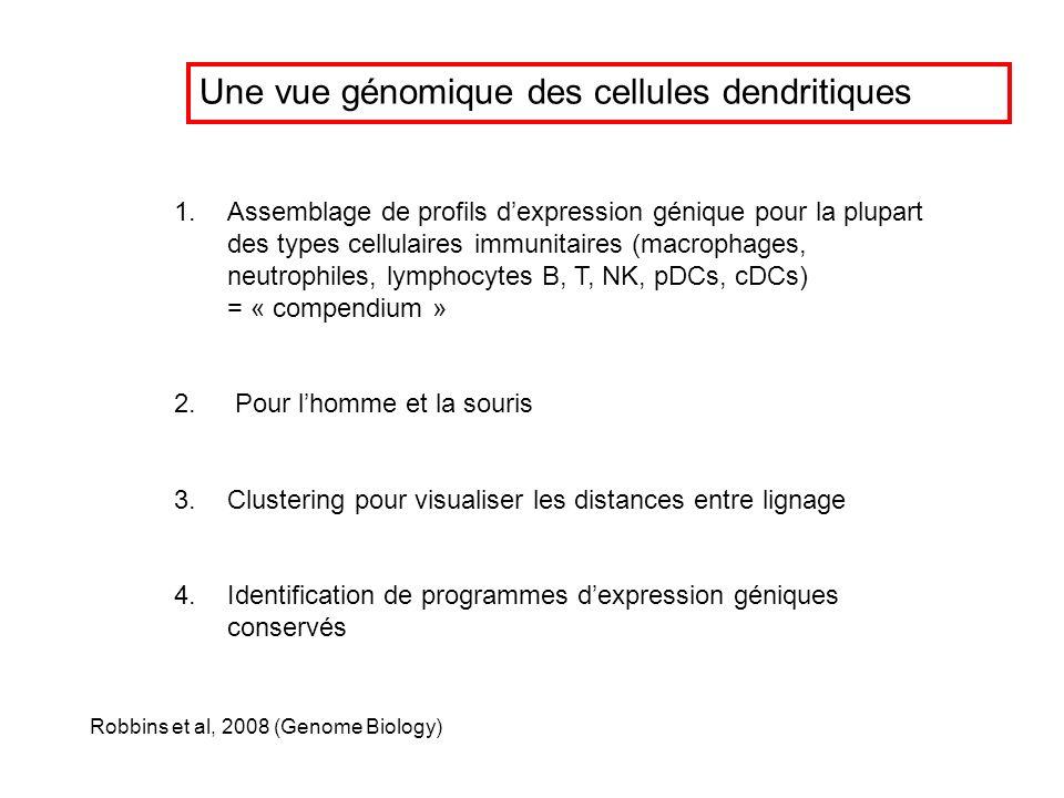 Une vue génomique des cellules dendritiques