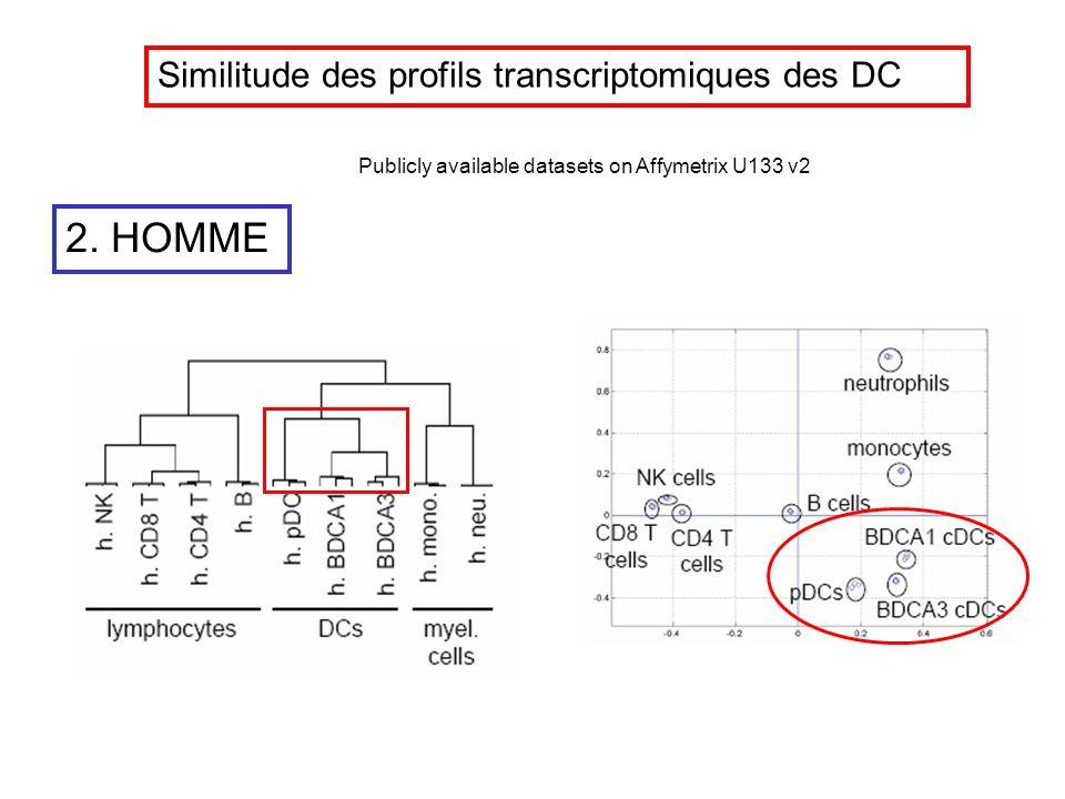 2. HOMME Similitude des profils transcriptomiques des DC