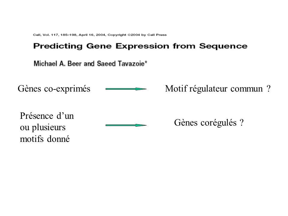 Gènes co-exprimés Motif régulateur commun . Présence d'un ou plusieurs motifs donné.