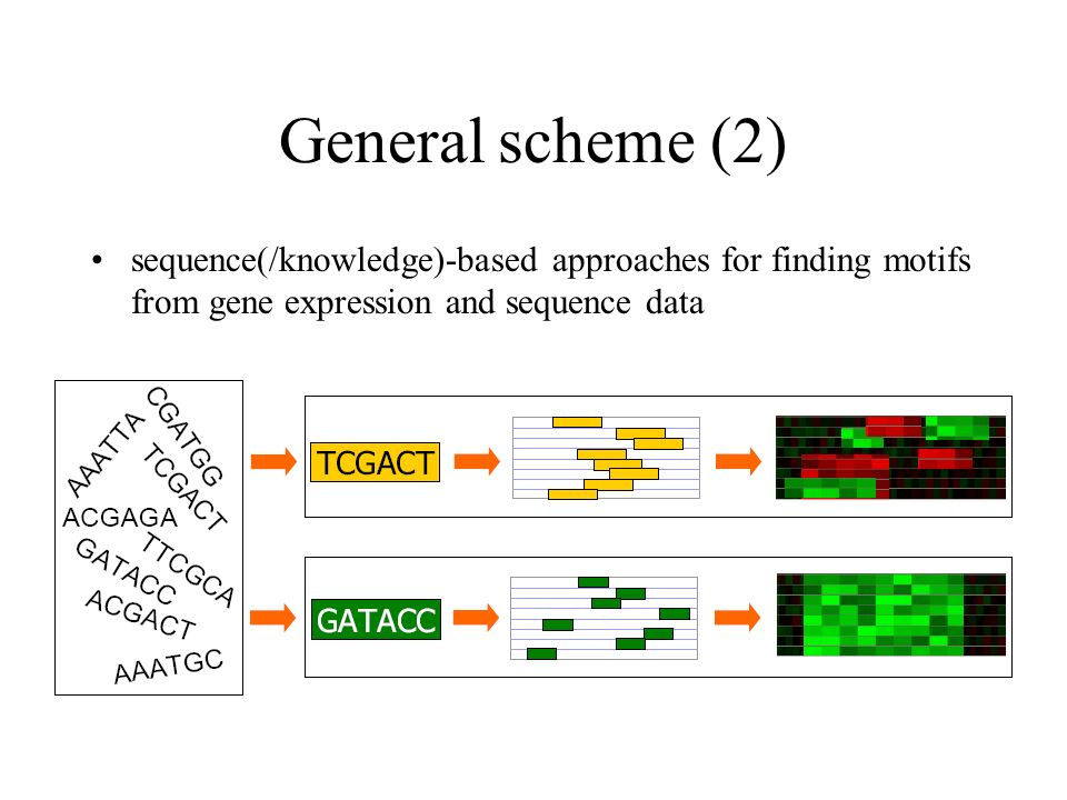 General scheme (2) sequence(/knowledge)-based approaches for finding motifs from gene expression and sequence data.