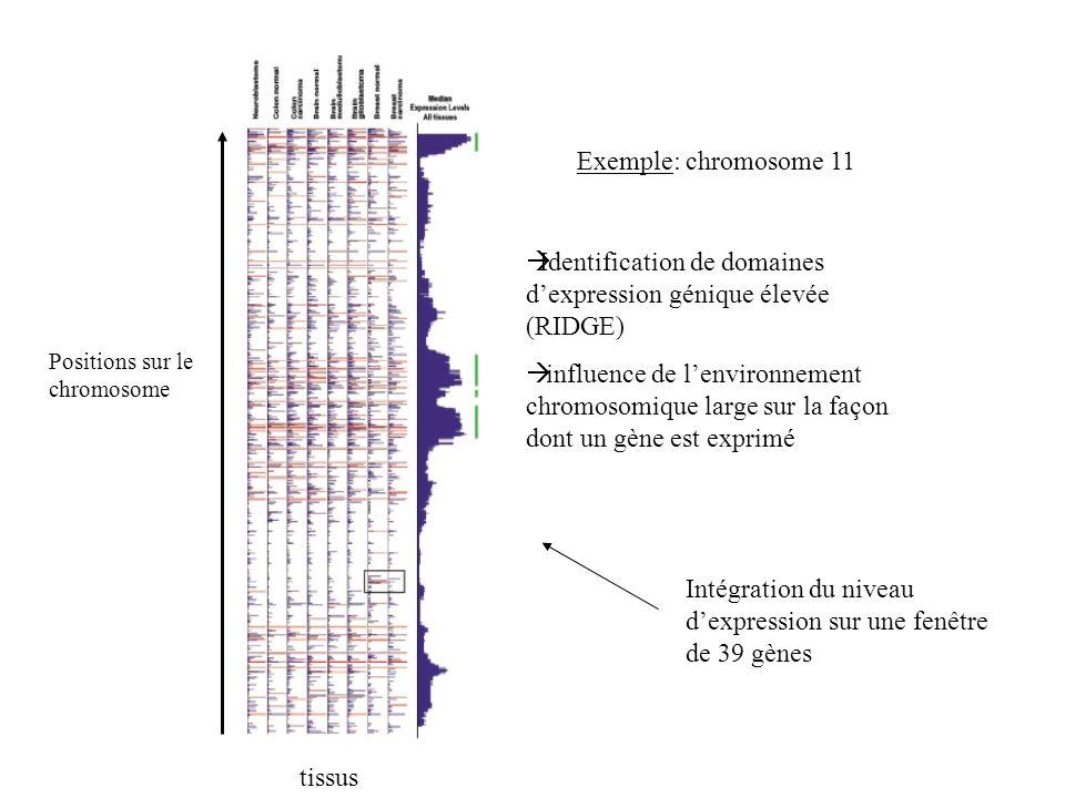 Identification de domaines d'expression génique élevée (RIDGE)