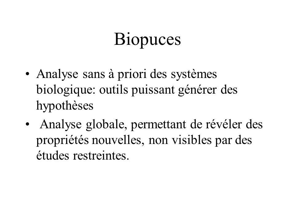 Biopuces Analyse sans à priori des systèmes biologique: outils puissant générer des hypothèses.