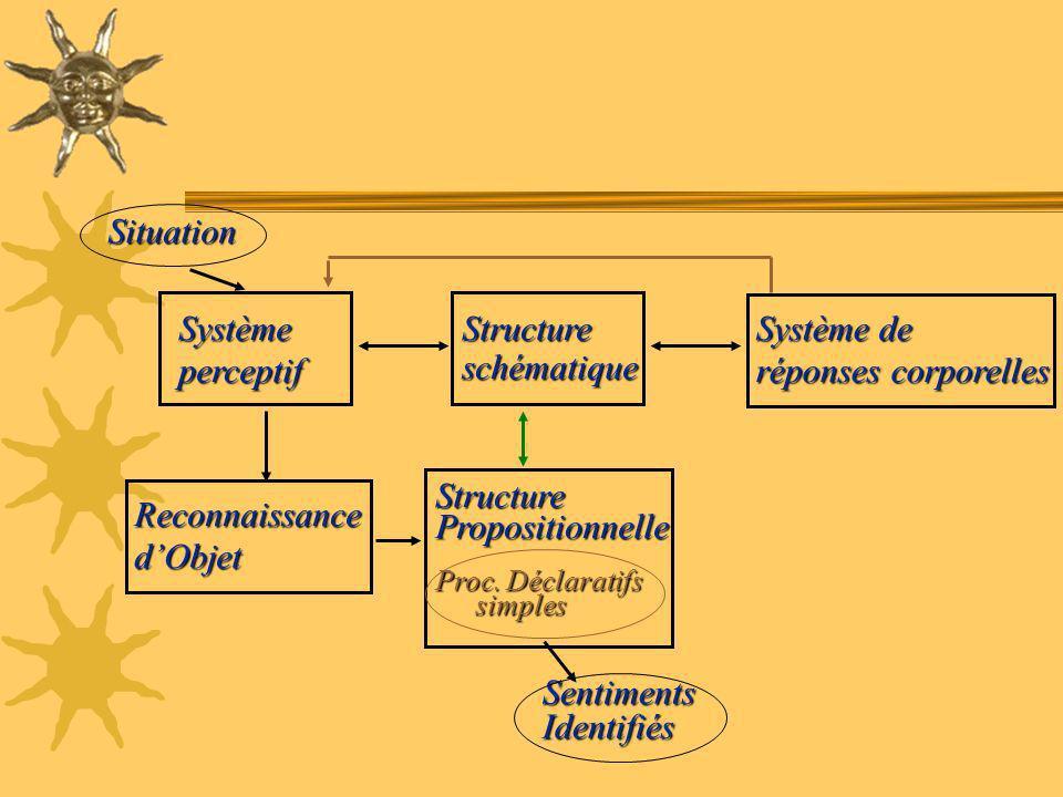 Situation Système perceptif Structure schématique Système de